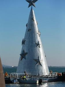 Geelong Christmas Tree.