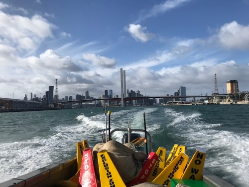 Our buoys on their way to be deployed using Maya's Bay work boat.